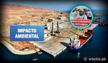 Reserva Nacional de Paracas: Alertan riesgos por almacenamiento de minerales en el puerto - Wayka