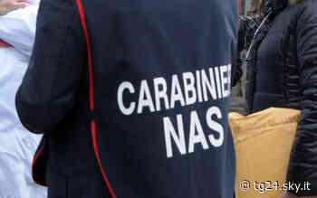 Latina, ricette false per acquistare oppiacei: perquisizioni dei Nas - Sky Tg24