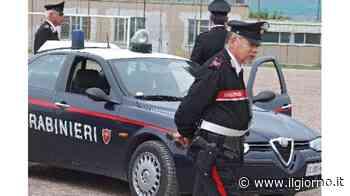 Milano, al bar con la molotov: preso dai carabinieri - IL GIORNO