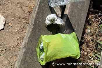Was am Sonntag in Schwerte wichtig wird: Gibt es zu viel Müll im Schwerter Wald? - Ruhr Nachrichten
