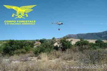 Incendi in Gallura a Trinità d'Agultu e Vignola, in azione l'elicottero della forestale | OlbiaNotizie.it - OlbiaNotizie