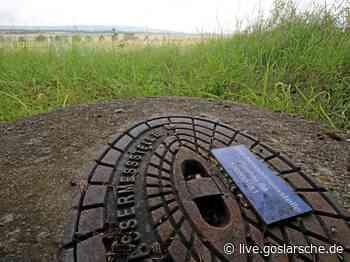 Grundwasserpegel auf Talfahrt | GZ Live - GZ Live
