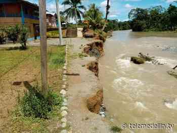 3.000 familias afectadas por creciente de tres ríos en Vigía del Fuerte - Telemedellín