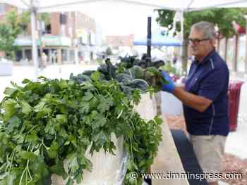 Downtown farmers' market rings in a new season - Timmins Press