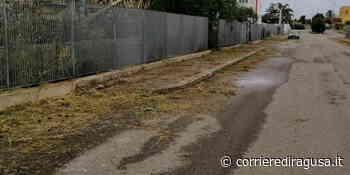 Zona artigianale Modica in abbandono con erbacce e detriti - Modica - CorrierediRagusa.it