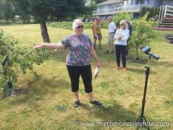 Homeowners fighting Courtenay city council trail decision - My Comox Valley Now
