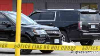 Pat Musitano killed in Burlington shoot, two others injured | Watch News Videos Online - Globalnews.ca