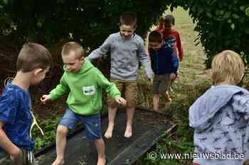 Natuurworkshop voor kinderen in Het Laatste Huis - Het Nieuwsblad