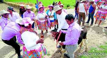 Fiestas de santiago en el valle del Mantaro serán espacios propicios para el contagio de COVID-19 - Diario Correo