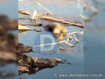 Cadáver é localizado às margens do Rio Piracicaba, em Coronel Fabriciano - Jornal Diário do Aço