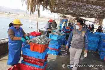 Pescadores de Huarmey respaldan decisión de alcalde de rechazan aprobación de contratos petroleros - Diario Digital Chimbote en Línea