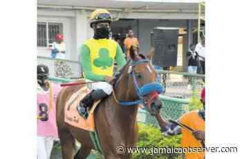 Overnight the next frontier for Father Patrick - Jamaica Observer