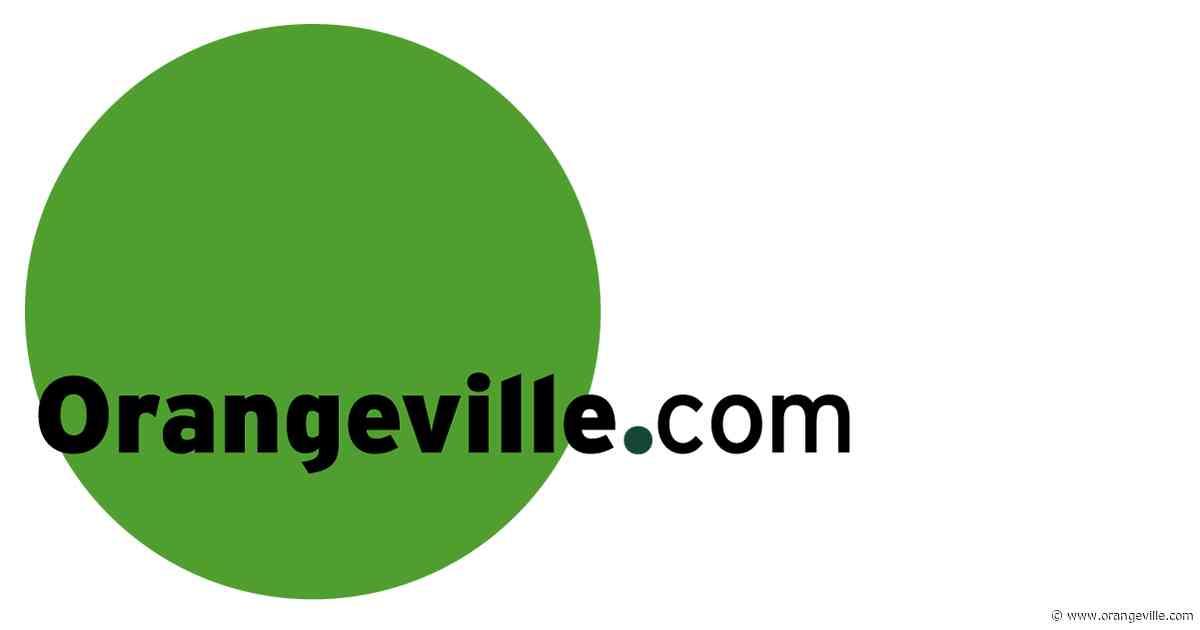 Don't disturb the trap - Orangeville Banner