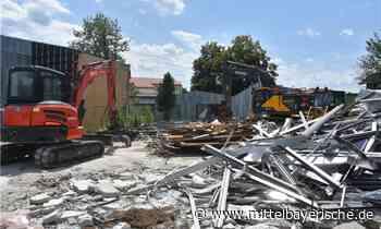 Wabenbau in Mitterdorf ist Geschichte - Region Cham - Nachrichten - Mittelbayerische