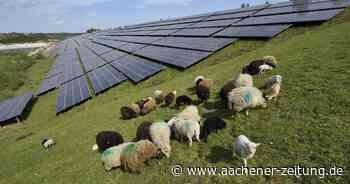 Energiepark in Herzogenrath für 2030 geplant - Aachener Zeitung