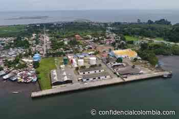 El Covid 19 aceleró la adquisición de los fármacos, a través de Internet: presidente de Farmalisto - Confidencial Colombia