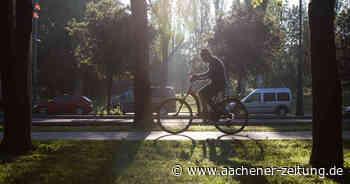 Im Dalheimer Wald in Wegberg belästigt ein Radfahrer eine 18-Jährige - Aachener Zeitung
