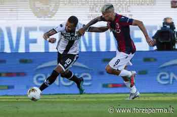 Parma-Bologna, vota le PAGELLE DEI TIFOSI - Forza Parma
