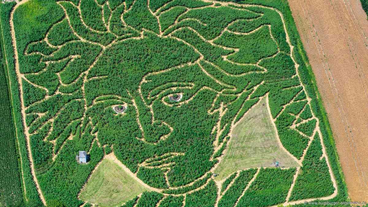Ex Ornamentis: Im Uttinger Labyrinth gibt es heuer klassische Musik