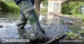 GNR de Leiria já detetou seis crimes de poluição ambiental este ano - Observador
