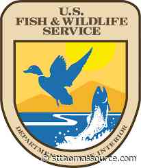 DPNR to Hold Annual Commercial Fisher Registration - St, Thomas Source