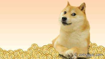 Dogecoin's [DOGE] TikTok Pump Ends As Its Price Plummets - Coingape