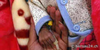 UN-Bericht: Unterernährung ist gefährlich auf dem Vormarsch - Herisau24