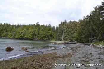 Beverly Hills 90210 star's family selling Vancouver Island Beach Resort - Aldergrove Star