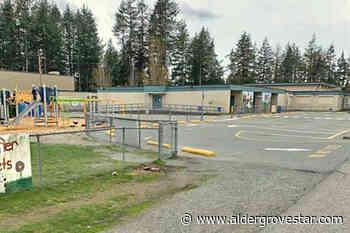 Vandals deface Aldergrove elementary school with racist slur, male genitalia - Aldergrove Star