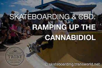 Skateboarding and CBD: Ramping Up the Cannabidiol