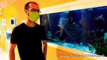 À Octeville-sur-Mer, la ferme marine Aquacaux reste ouverte cet été avec un accès réduit - Paris-Normandie