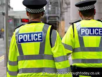 Police warning after spate of dog thefts in Cambridgeshire, including in Peterborough - Peterborough Telegraph