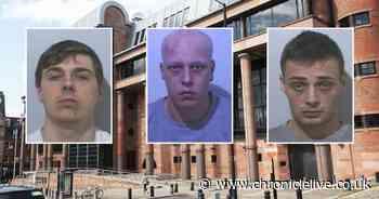 Three men spared jail after cannabis farm discovered at Ashington flat