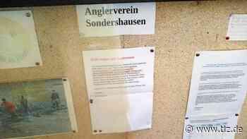 Schaukasten in Sondershausen mutwillig zerstört - Thüringische Landeszeitung