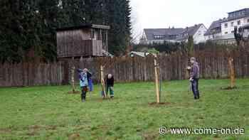 In Valbert: Blumenwiese neben Obstgarten - come-on.de