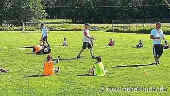 Heidecker F-Junioren starten mit Begeisterung ins erste Training - donaukurier.de