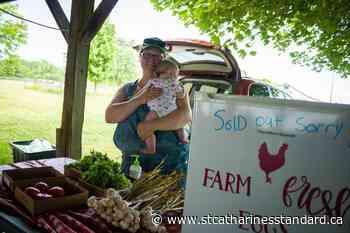 Despite COVID-19 challenges, Wainfleet Farmers Market busier than ever - StCatharinesStandard.ca