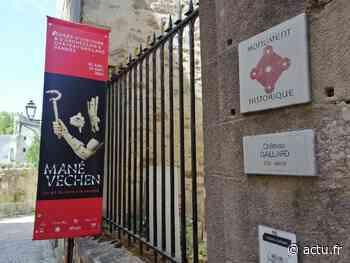 Vannes : les trésors de Mané-Véchen exposés au musée de Château-Gaillard - actu.fr