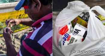 Municipalidad de Cerro Azul entrega canastas con alimentos a pescadores con COVID-19 - Diario Correo
