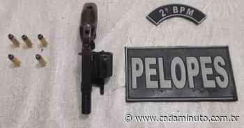 Polícia Militar apreende armas de fogo em União dos Palmares e Messias - Cada Minuto