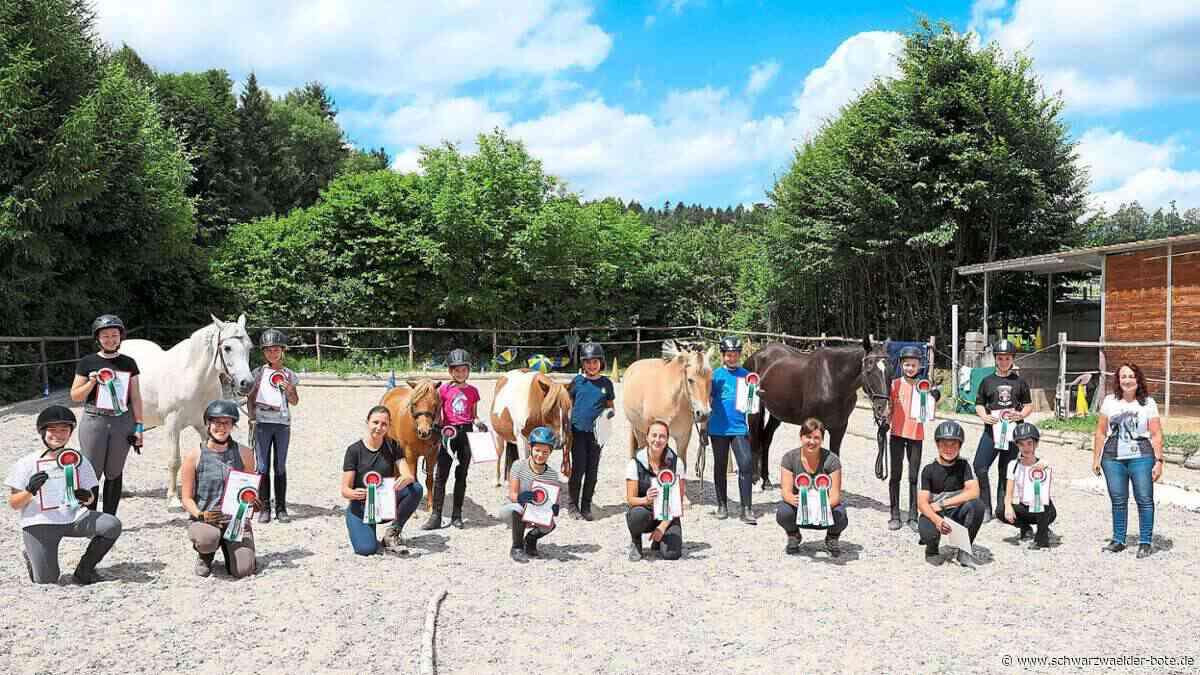 Wildberg: Mehr Gelassenheit für Pferde und ihre Reiter - Wildberg - Schwarzwälder Bote