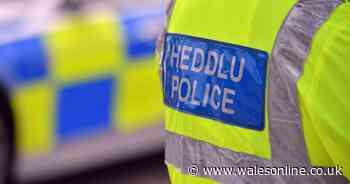 Police investigate death of three-year-old boy