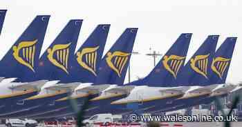 Ryanair to axe 1,000 flights because of slump in demand