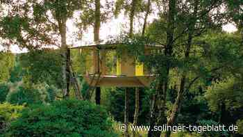 Architekt baut seiner Tochter ein Baumhaus
