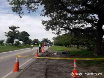 Accidente vial en la vía Y de Ciénaga-Ariguaní le costó la vida a un joven de 23 años - Seguimiento.co