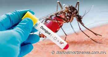 Zona baja de Misantla con alto índice de dengue - Diario el Martinense