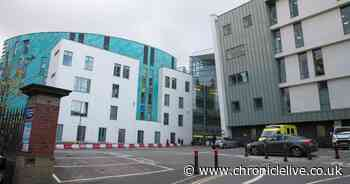 Twelve arrested in police operation to snare suspected bike thieves at the RVI