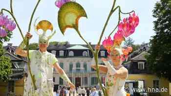 Gartenfest in Wilhelmsthal abgesagt, Hofgeismarer Viehmarkt vor dem Aus - hna.de