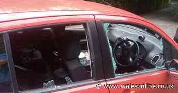 Street of cars have windscreens smashed 'for fun'