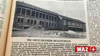 Knochenfund in Nuttlar und neue Realschule in Eslohe - Westdeutsche Allgemeine Zeitung